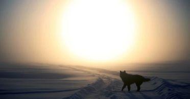 puesta-de-sol-invierno